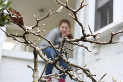 (Madeleinee! :)) Tags: brown white house blur tree green window girl canon leaf focus dof teen teenager canondlsr canon450d rebelxsi kissdigitalx2 madeleinee
