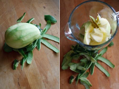 green mango margarita sorbet green mango