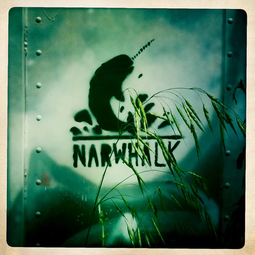narwhalk