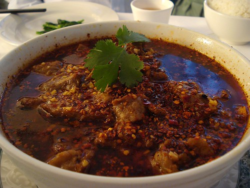 A deep bowl of sliced beef drowned in a thinnish, spicy sauce with a layer of deep red oil on the top.  Large quantities of chopped dried chillies and fresh chopped garlic are visible, and the dish is garnished with a single sprig of fresh coriander.