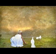 Playing with Innocence (h.koppdelaney) Tags: life white art love digital photoshop self energy mood venus child state symbol spirit pigeon dove picture compassion mind innocence motivation awareness metaphor optimism consciousness psyche symbolism psychology archetype nave naivety koppdelaney