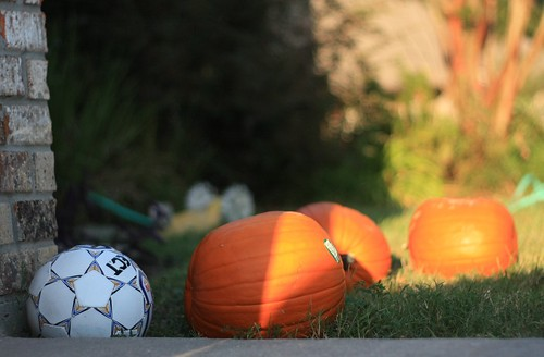 pumpkins + soccer ball
