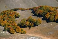 autumn at Piano Grande (Eifeelgood) Tags: autumn italy fall italia herbst indiansummer eifeelgood