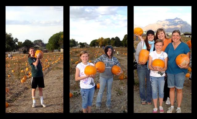 PickedPumpkins