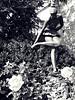 Bailarina (Isabel Rodríguez) Tags: blanco arbol arquitectura san negro flor rosa marino bailarina mywinners