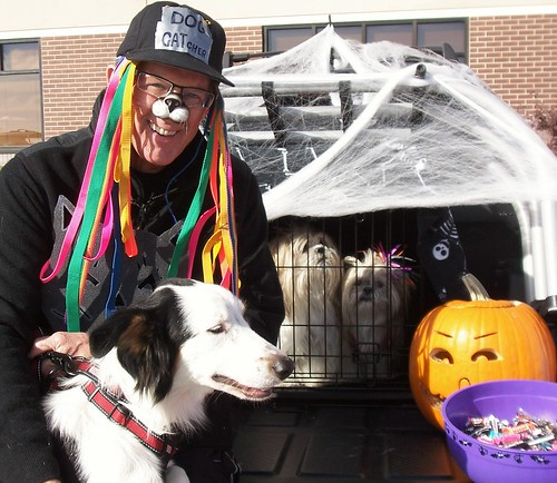 trunk treat dog catcher I-94homes