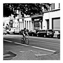 tour de france (japanese forms) Tags: ©japaneseforms2017 ボケ ボケ味 モノクロ 日本フォーム 黒と白 bw bicicleta bicicletta bicycles bike blackwhite blackandwhite blancoynegro bokeh candid düsseldorf etappe1 etappedertourdefrance fiets fietsen kraftwerk monochrome pun radfahren random schwarzweis square squareformat strasenfotografie straatfotografie streetphotography tourdefrance woordspeling wortspiel zwartwit