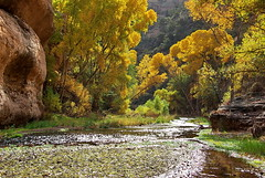 Aravaipa Canyon - east end (Al_HikesAZ) Tags: camping arizona creek landscape hiking quote paisaje canyon trail backpacking wilderness hikes riparian blm aravaipa edwardabbey bureauoflandmanagement aravaipacanyon  sendirismo azhike alhikesaz