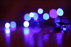 Blue!!  LED Christmas lights out of focus (doggiedoc@tcah.com) Tags: christmas blue holiday blur canon lights focus dof bokeh outoffocus led 2009 f12 oof 85m 40d doggiedoc