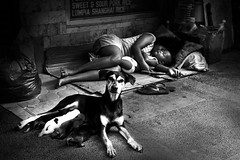 Quiapo, Manila - Parenting Love (Mio Cade) Tags: dog baby white black love puppy asia sleep philippines mother manila parenting quiapo tms tellmeastory