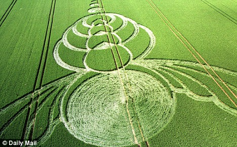 crop-circlesklklk
