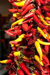Paprika at food market in Budapest, Hungary
