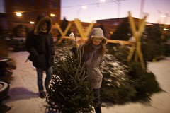 our tree (Ben Syverson) Tags: friends chicago tree illinois christmastree magichour christmastreelot susandwyer marcwitmer mykrew 2200wgrandave grandstreetgardens