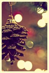 Ten more nights! (Melissa Maples) Tags: christmas xmas brown tree pine turkey lights nikon asia cone bokeh trkiye antalya ornaments pinecone nikkor vr afs textured  18200mm   f3556g d40 roundedcorners  18200mmf3556g