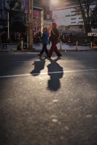 Shinjuku Shadows