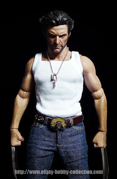 Wolverine (11)