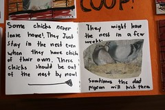 pigeon lapbook families minibook