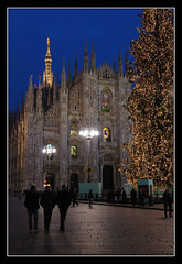 (matt :-)) Tags: christmas new xmas italy milan tree natal weihnachten happy navidad nikon italia cathedral milano year catedral noel cathdrale rbol  duomo nikkor albero natale mattia felice   sapin 2010 anno dme duomodimilano buon  nuovo domm milancathedral   nikond80  kristnasko  catedraldemiln   cathdraledemilan 2470mmf28g dommdemilan consonni dmedemilan mattiaconsonni