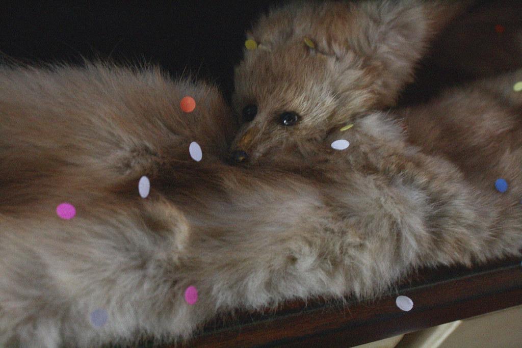 confetti fur stole