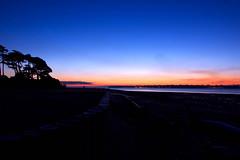 Sunrise Silhoutte (StuartWebster) Tags: sky sun beach sunrise d50 iso200 nikon break tripod isleofwight silhoutte 18mm lepe drigtwood