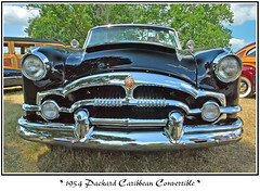 Surrounded by Woodies (sjb4photos) Tags: car automobile packard concoursdelegance packardcaribbean autoglamma 1954packard 2009meadowbrook