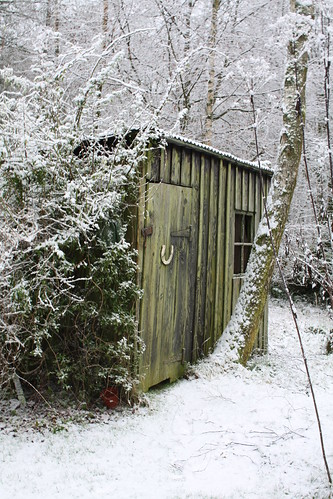 Shed in the Snow