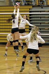 Blocking the ball (twg1942) Tags: girls college sport women university action pa volleyball colgate athletes bethlehem lehighvalley lu lehigh lehighuniversity