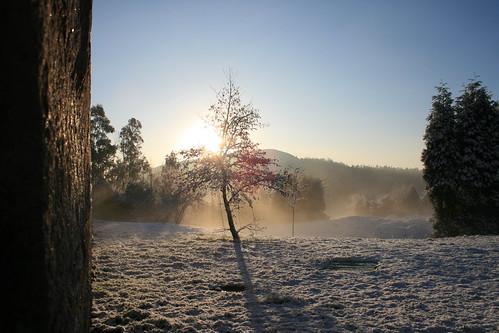Amanecer en la nieve
