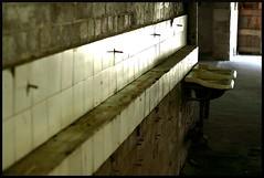 Souvenir (Rampix) Tags: canon island eos 50mm sink sydney australia abandon cockatoo lavabo usine eos50d