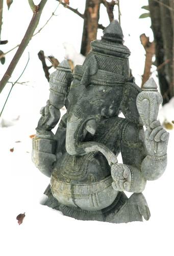 2010 janvier 13 - neige 021