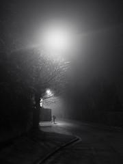 Brouillard matinal (philoufr) Tags: winter blackandwhite mist fog night noiretblanc hiver earlymorning nuit brouillard petitmatin brume andrésy canonpowershots90