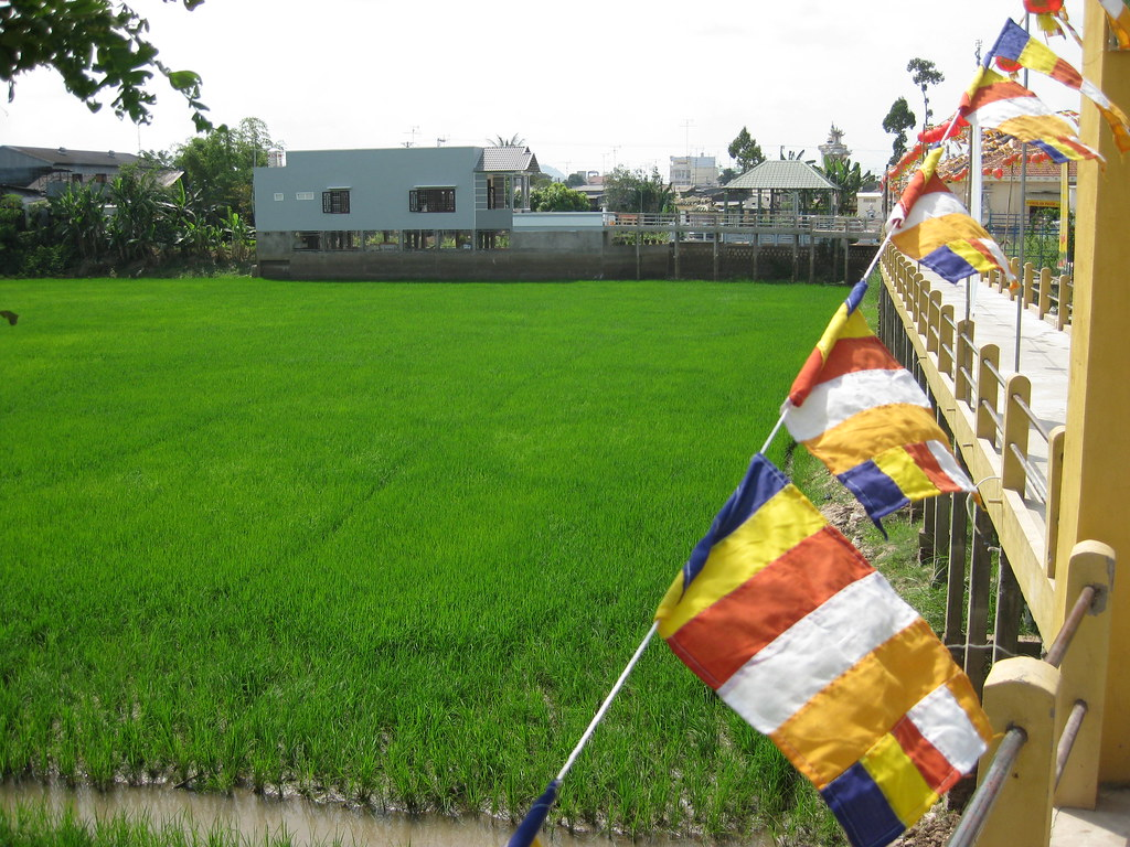 rice and flags