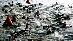 Washing Machine (smakies) Tags: summer fish canada water bike start swim long chaos north machine fast run course splash mass muskoka buoys confusion triathlon washing choppy