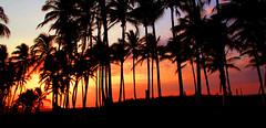 SUNSET-TRAMONTO-ATARDECER CONTROLUCE-  MeXiCo (Elias Arcos Photo) Tags: sunset contraluz atardecer tramonto sonnenuntergang   controluce backlighting  gegenlicht