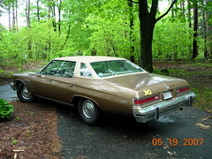 Straight out of a Starsky & Hutch or CHiPS episode... (sixty8panther) Tags: birthday roof usa brown green classic cars hardtop grass leaves car monster bronze america photo buick spring big gm iron long riviera general time antique metallic vibrant steel empty united low detroit wide tan may motors vehicles chrome burnt photograph 200 copper vegetation huge april lone vehicle fixed block alive states lush lesabre solitary umber torque bicentennial 1976 electra brightwork tanned 76 225 455 wheelbase pillarless