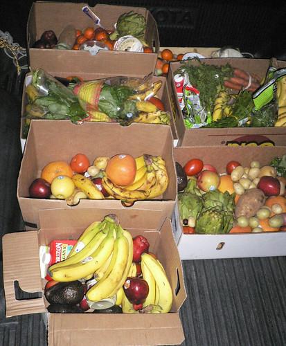 洛杉磯一間超市的垃圾箱內翻出的蔬果。圖片節錄自:Eric Einem相本。