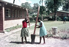 two women pounding maize (Sonata Crew) Tags: africa house garden mortar malawi flour maize blantyre nsima