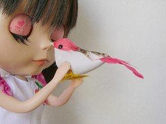 I  Birds! (Mari Assmann) Tags: bird toy doll megan passarinho plastic gifts blythe   boneca custom takara ebony jouet presentes plstico girlish poupe rbl primadollyebony pd2e sabrinaeras sonydscs730 fabicavali obrigadad