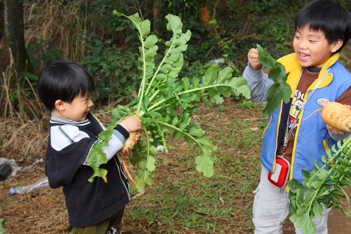 三芝番婆林花園(花卉、醬菜)0008