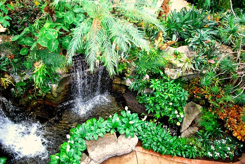 Opryland Waterfalls