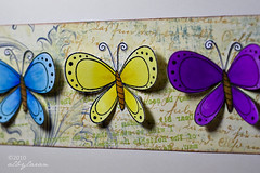 Butterfly Trio 2