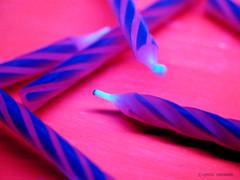 Schwarzlicht (Kati Kerber) Tags: pink blue white neon candles candle bright violet rosa kerze lila fluorescent blacklight blau weiss kerzen leuchtend dazzling schwarzlicht grell uvlicht fluoreszierend buntepappe colorfulcardboard