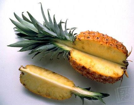 pineapples_stockfood
