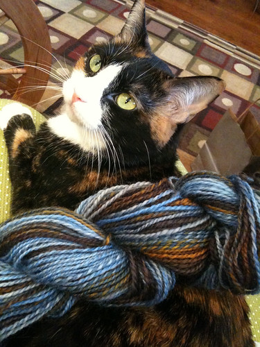 Purl with yarn