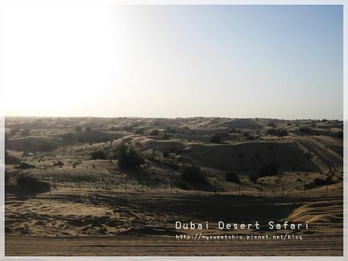 Dubai Desert Safari 1  杜拜沙漠衝沙