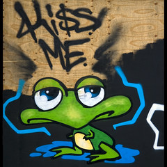 Kiss the frog! (Arjan Gerritsen) Tags: green photography graffiti photo groen foto fotografie picture frog kikker afbeelding canonefs1785isusm eos400d