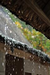 it was rainy for a short while (qonita) Tags: indonesia garut tasik tasikmalaya kampungnaga