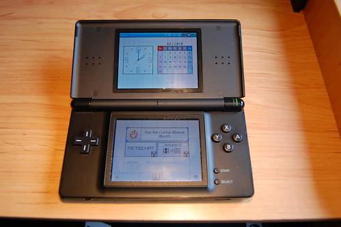 Nintendo DS interior