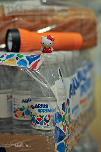 Hello Kitty - 58/365 Photo
