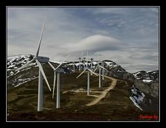 Puerto de La Sia.Lo que el viento ...se dejo!! (J.Izaguirre) Tags: olympus zuiko cantabria ecologia aerogeneradores lasia vientowind tentirujo89